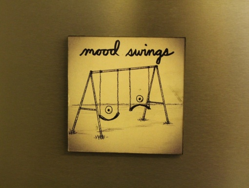 Fridge Magnet ReWritable Mood Swings3