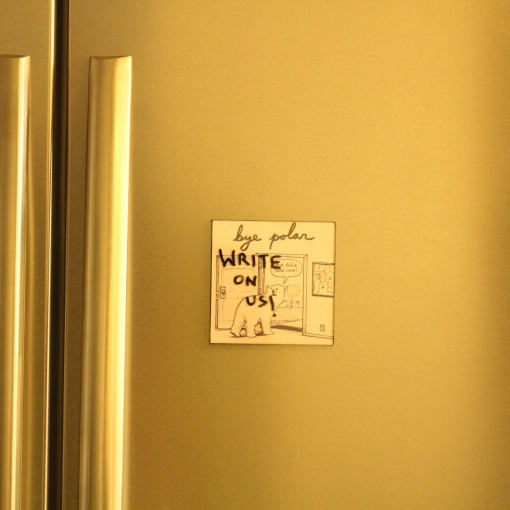 Fridge Magnet Re-Writable | Bye Polar 2