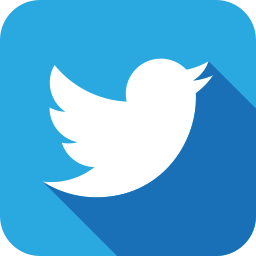 twitter social icon
