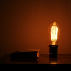 1 Lamp in Metal - Minimalist Edison Bulb
